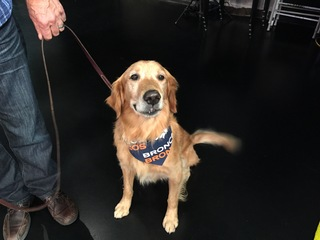 Pet of the day for October 9th