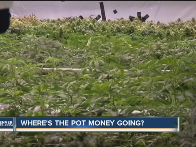 Audit: Problems tracking Denver pot tax money