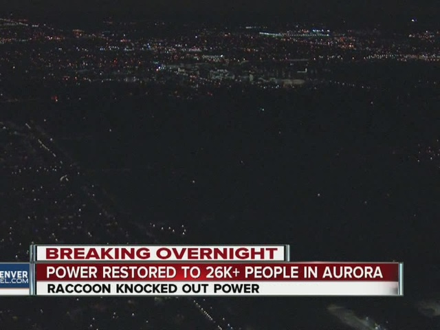 Raccoon knocks out power to 26,000+