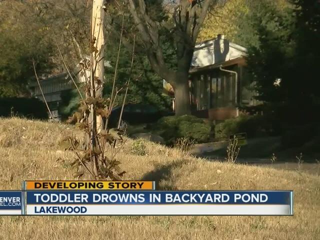 Toddler drowns in backyard pond