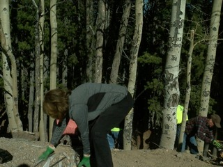 Volunteers clean up illegal dumps near Evergreen