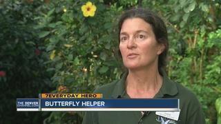 7Everyday Hero helps butterflies thrive