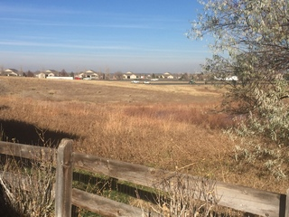 Homeowners: CDOT made mistake in noise study