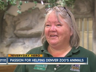 7Everyday Hero helps animals at the zoo