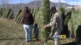 Ft. Carson families get free Christmas trees