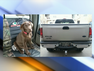 Puppy returned, stolen truck found after search