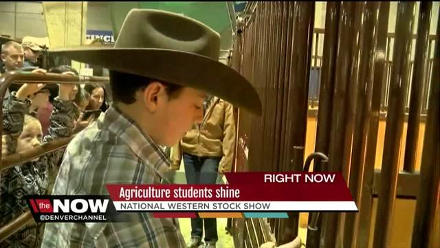 Agriculture students shine at National Western Stockshow