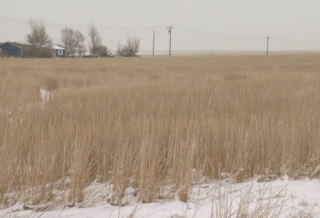 Above-average snowpack helping Colo. farmers