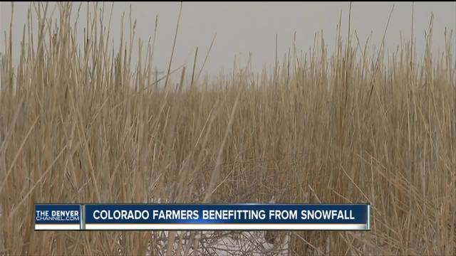 Colorado snowpack- well above average- a boon to farmers- crops