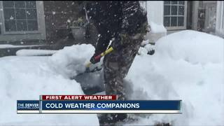Cold weather companions needed for seniors