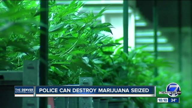Colorado court says police can destroy marijuana seized in investigations