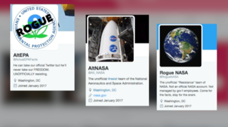 Media blackout spawns rogue Twitter accounts
