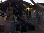 2 homes damaged after tree falls amid high winds