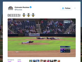 Bees swarm infield during spring training game