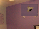 Shots fired into child's bedroom in Northglenn