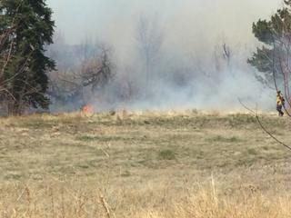 Brush fire in DougCo 'human caused, suspicious'
