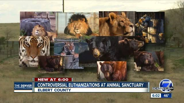 11 big animals euthanized as relocation denied for Elbert County animal…