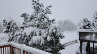 Photos: Spring snowstorm turns metro into winter