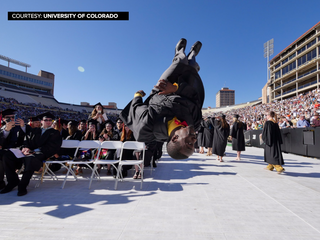 CSU, CU grads take on the world