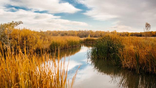 Colorado Parks and Wildlife working to avoid budget shortfalls- public…