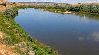 Man found dead in Yampa River