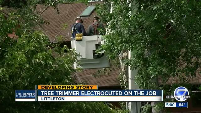 Arborist electrocuted in Littleton tree- power shut off to recover body