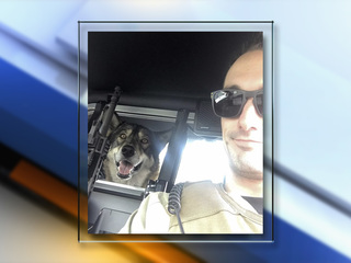 Stolen service dog reunites with Colorado man