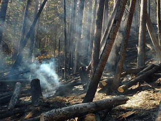 Peak 2 Fire near Breck: 85% contained, 84 acres