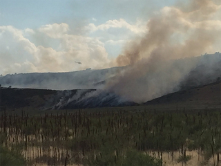 Spring Glade Fire burns in Larimer County