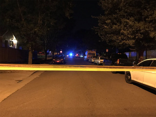 Denver PD investigating homicide near City Park