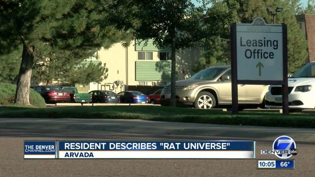 Arvada woman says apartment rat infestation is ruining her life