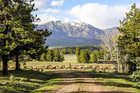$46M ranch for sale near Pagosa Springs