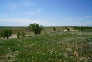 GALLERY: 8,000+ acre ranch to be auctioned off