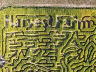 7 amazing Colorado corn mazes to get lost in