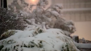 How much snow fell in 1st Denver storm of season