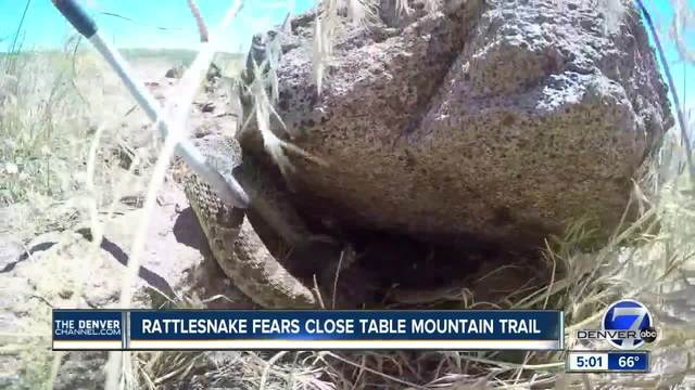 Rattlesnakes force trail closure at North Table Mountain Park in…