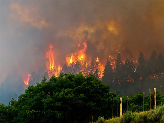 Last evacuation orders lifted near 416 Fire