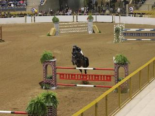 Stock Show brings in more than 700,000