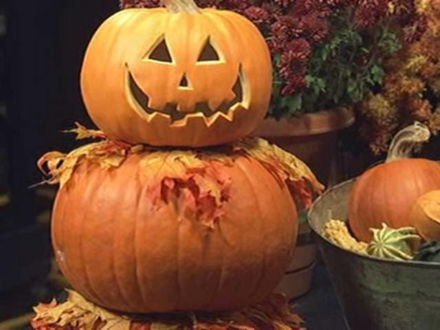 Build A Fall Topiary Using Pumpkins, Dowel Rod   Denver7  TheDenverChannel.com
