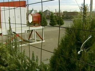 Family-owned tree lots feel effects of shortage