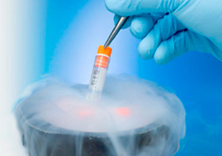 Fertility clinics respond to egg, embryo failure