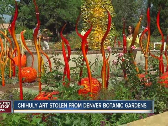 Exceptionnel 3 Pieces From Chihuly Cat Tails Sculpture Stolen From Denver Botanic Gardens    Denver7 TheDenverChannel.com