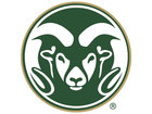 Niko Medved returns to CSU to coach basketball