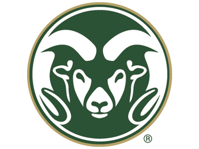 Niko Medved Returning To Colorado State As Head Coach Denver7