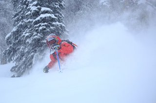 Scientists want help from backcountry skiers