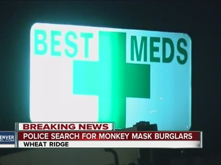 Burglars wearing monkey masks hit pot shop