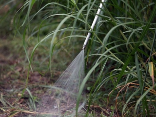 Rancher to be jailed for spraying pesticides
