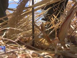 Colorado abnormally dry as La Niña moves in