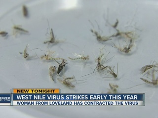 West Nile strikes earlier than usual this year