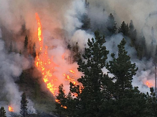 Lodgepole Fire in Leadville area 60% contained